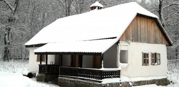 Casa din Visag